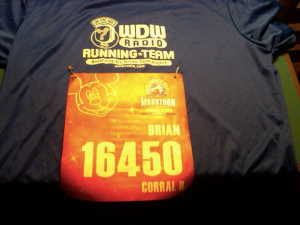 My Marathon Bib & WDW Radio Running Team Shirt