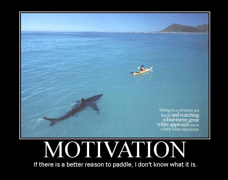 Trepidation Tuesday...because I missed Motivation Monday!